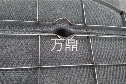 镍丝网除沫器